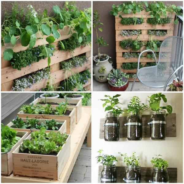 Apartment patio garden gardening without a garden 10 for Apartment patio garden design ideas