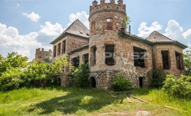 Kis magyar valóság: egy eladó, ragyogó kastély, teljesen lecsupaszítva